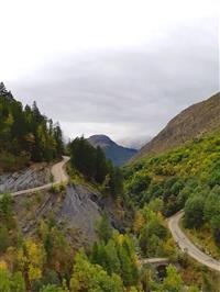 Enquête sur la perception de la forêt en Isère