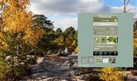 NATURE : Une appli pour reconnaître les arbres
